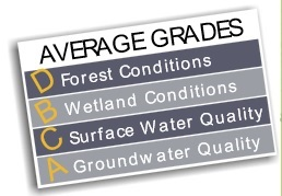 Some portion of three of the 10 subwatersheds of the Saugeen River fall within Brockton's boundaries - find out which one has received the best grades